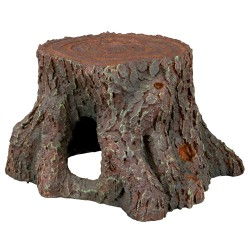 Tree stump, 16 cm
