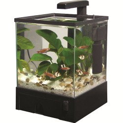Aqua Box med LED 5,5 L Sort