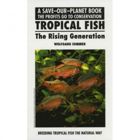 TROPICAL FISH, THE RISING GENERATION