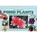 POND PLANTS AND THEIR CULTIVATION, A PRACTICAL GUIDE TO, PONDMASTER, LAMBERT