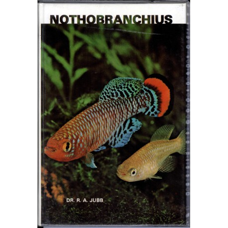 NOTHOBRANCHIUS, JUBB