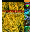 Invertebrates: A Quick Reference Guide, Sprung
