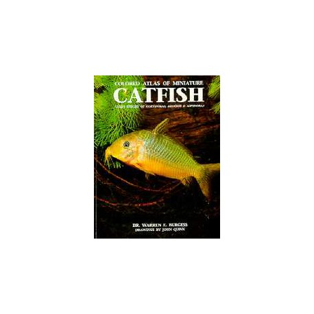 COLORED ATLAS OF MINIATURE CATFISH