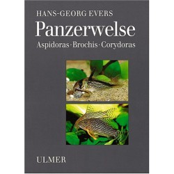 PANZERWELSE, EVERS