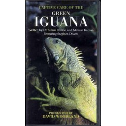 GREEN IGUANA CAPTIVE CARE, VIDEO