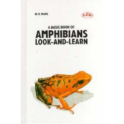 AMPHIBIANS, LOOK AND LEARN