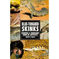 BLUE-TONGUED SKINKS