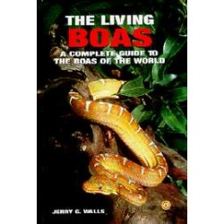 BOAS, THE LIVING, WALLS
