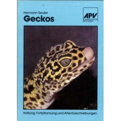 GECKOS, SEUFER,