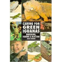 GREEN IGUANAS, CARING FOR, COBORN