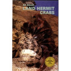 LAND HERMIT CRABS, ALL ABOUT, ROBERTS,