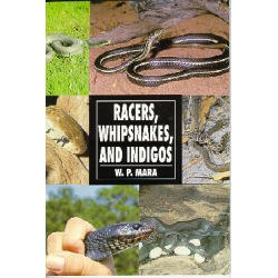 RACERS, WHIPSNAKES & INDIGOS