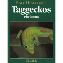 TAGGECKOS (HESELHAUS)