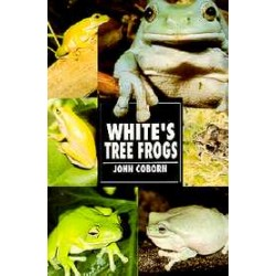 WHITE´S TREE FROGS