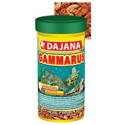GAMMARUS 100ML